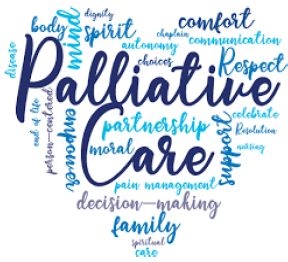 Insight into Specialty Palliative Care Services Banner